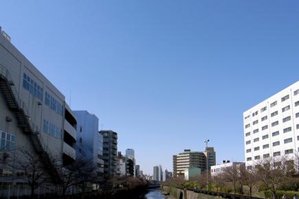 20060317_2.jpg