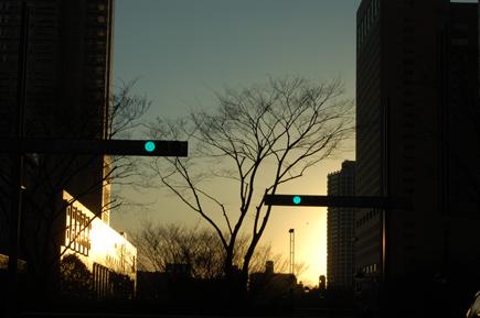 20060319_1.jpg