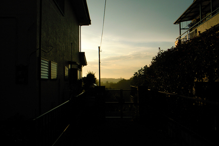 20060812_5.jpg