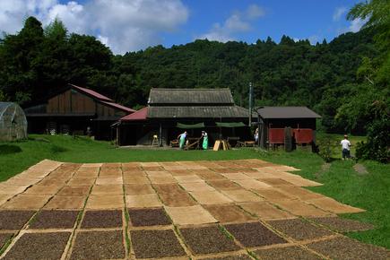 20060822_funori2.jpg