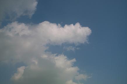 20061031.jpg