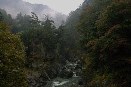 20061111_01.jpg