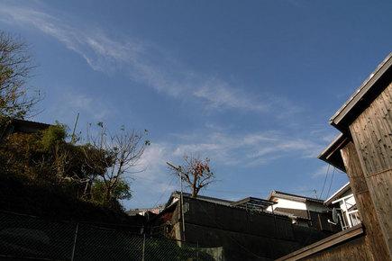 20061205_01.jpg